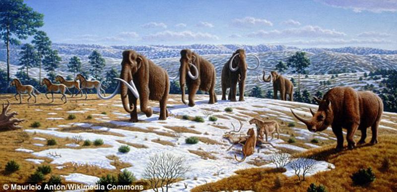 变化导致巨型动物灭绝