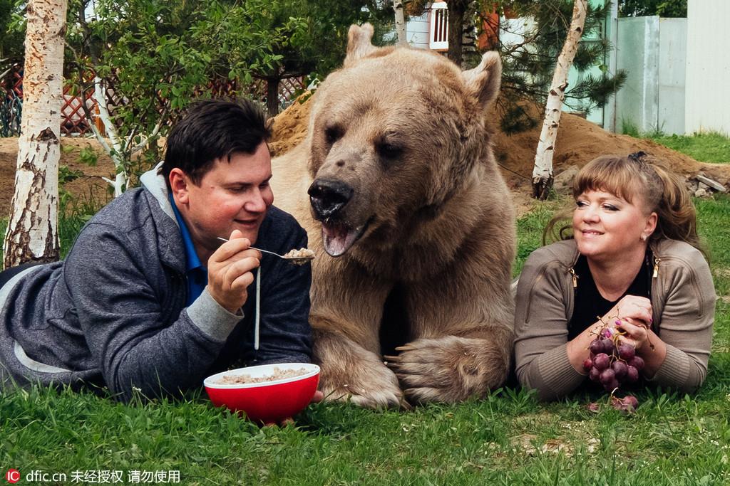 美国动物园杀猩猩救男童