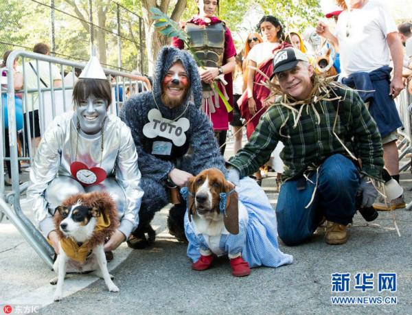纽约举行万圣节狗狗变装大游行 汪星人盛装登场